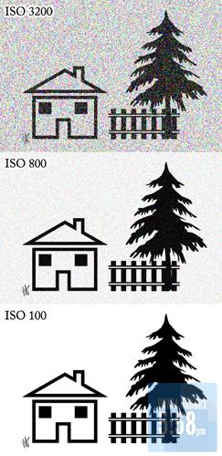 Fungsi ISO Untuk Fotografi