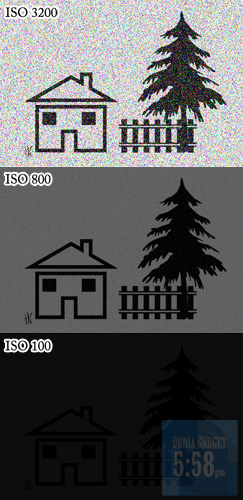 Apa Itu ISO Pada Kamera