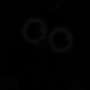 Foto di area sangat gelap