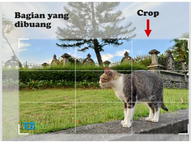 Arti cropping foto